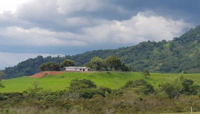 Se Venden Finca de 70 hectáreas Para Lotear En Florencia Código 640-99423